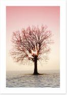 Trees Art Print 78298200