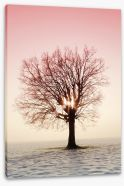 Trees Stretched Canvas 78298200