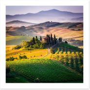 The hills of Val d'Orcia, Tuscany