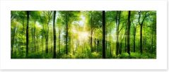 Forests Art Print 82972458