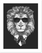 Suave lion